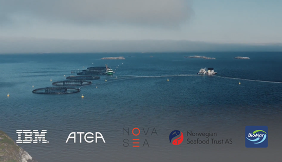 Nova Sea and Biomar are new members in Norwegian Seafood Trust, and vil track Salmon and fish-feed with Blockchain Technology